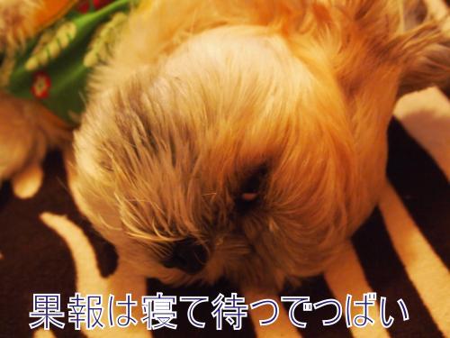 ・搾シ撤B067645_convert_20111120012007