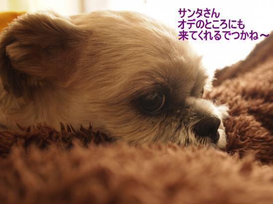 ・搾シ単B157722_convert_20111121203649