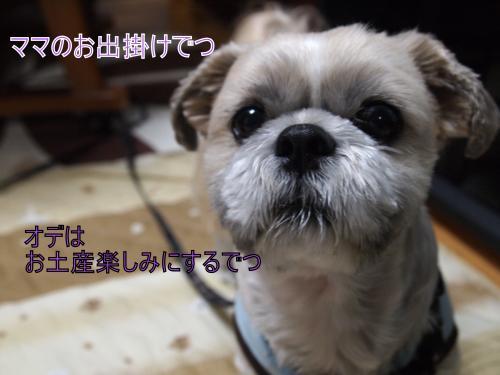 ・搾シ撤B228007_convert_20111125010424