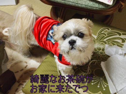 ・搾シ鳳1019469_convert_20120108011825