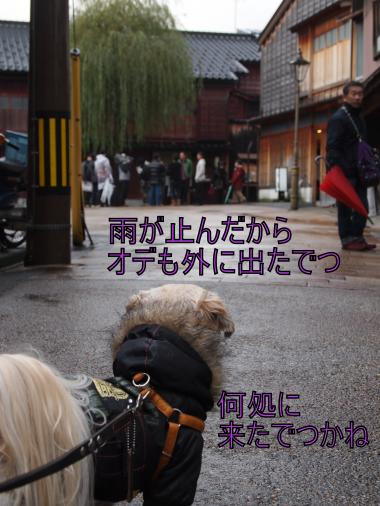 ・搾シ撤C128703_convert_20120108221842