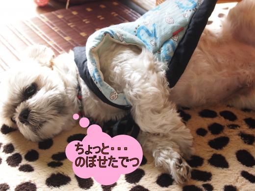 ・搾シ鳳2010725-1_convert_20120201204035