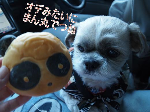 ・搾シ姫1129556_convert_20120205223223