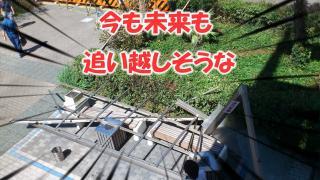 09GRL_0108.jpg