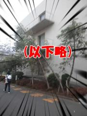 119CA3J0078.jpg