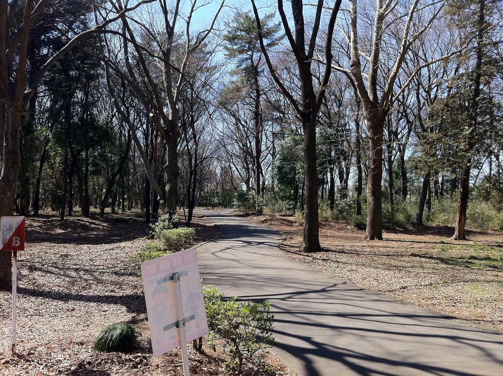 2011.03.05_さいたま水上公園 (3)