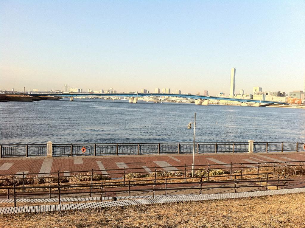 2011.01.28_豊洲公園 (3)