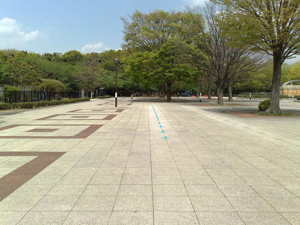 100430_光が丘(1)