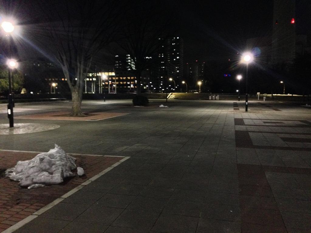 20140221_光が丘公園けやき広場2