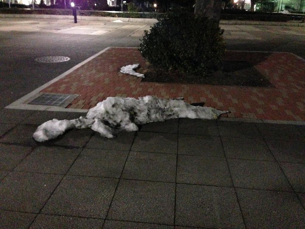 20140221_光が丘公園けやき広場3