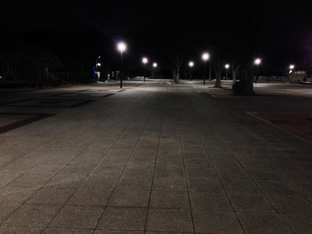 20140221_光が丘公園けやき広場4