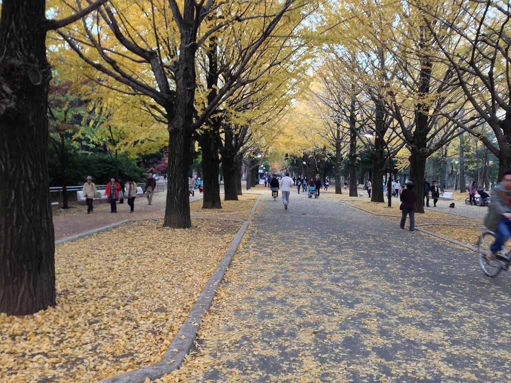 20131123_光が丘公園