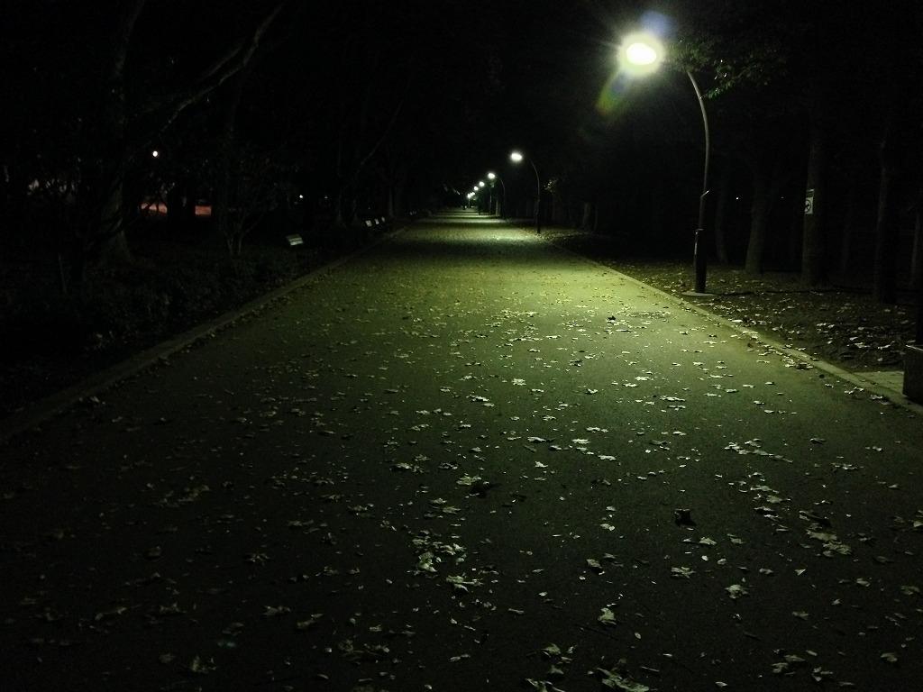 20131109_光が丘闇練 (1)
