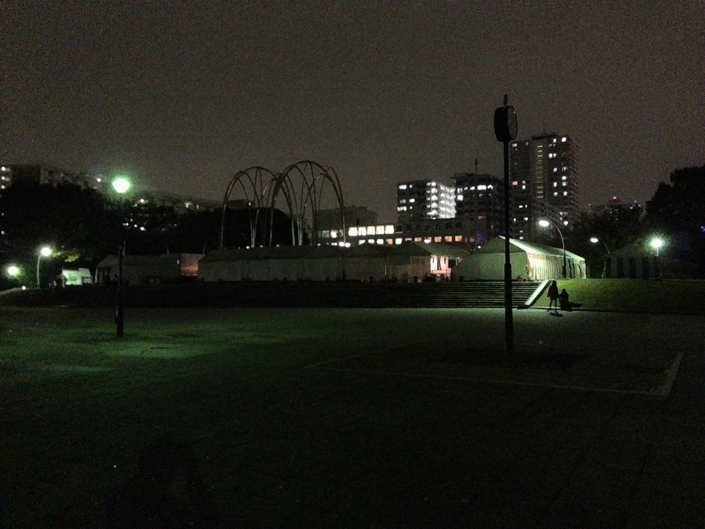20131109_光が丘闇練 (2)
