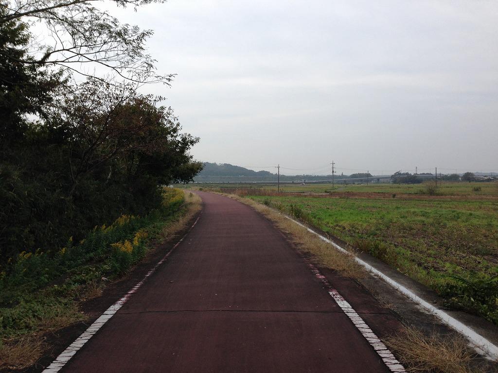 20131103_つくばりんりんLR (4)