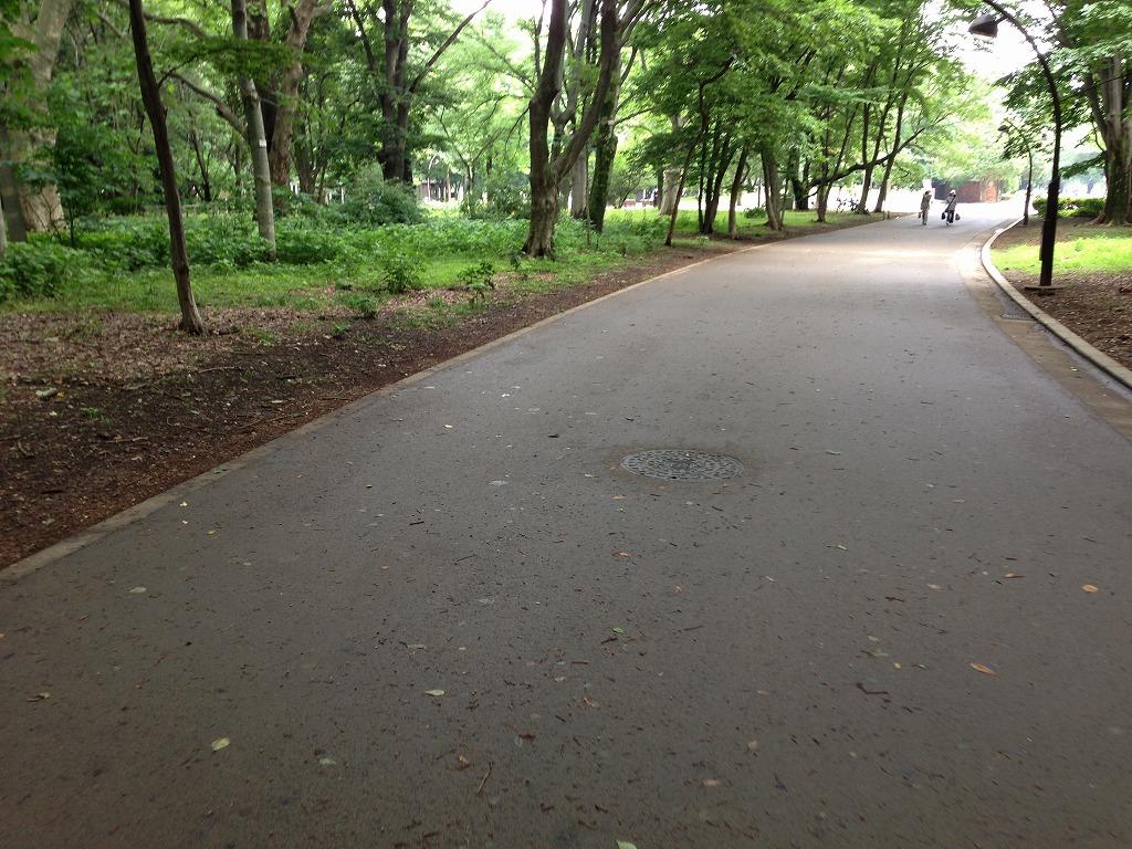 20130615_光が丘 (1)