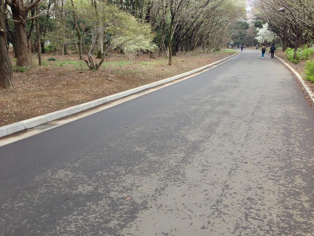 20130331_光が丘 (1)