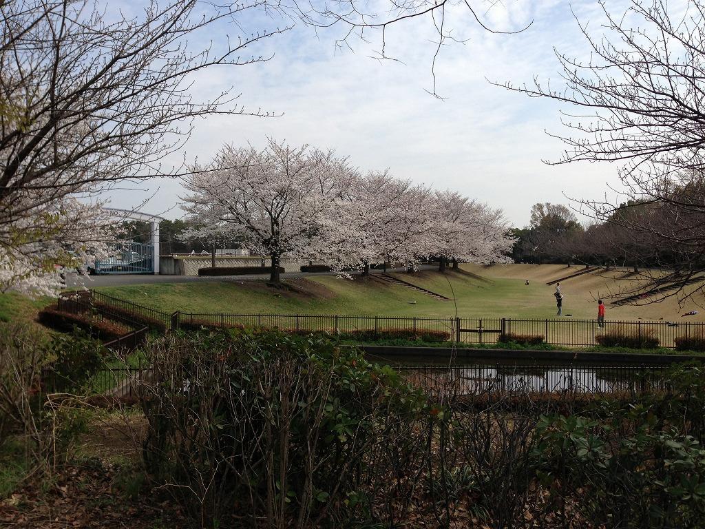 20130328_川越運動公園 (2)