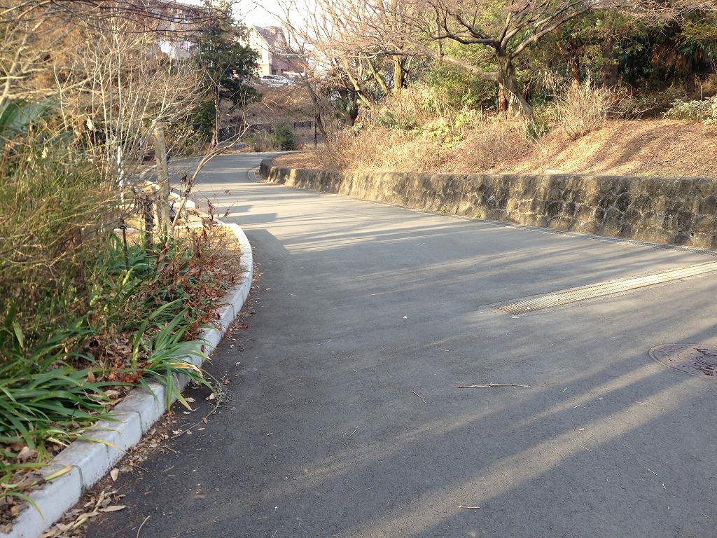 20120113_光が丘 (6)