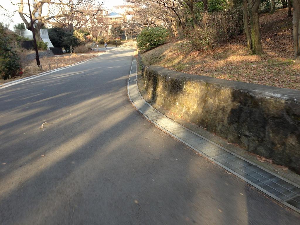 20120113_光が丘 (8)
