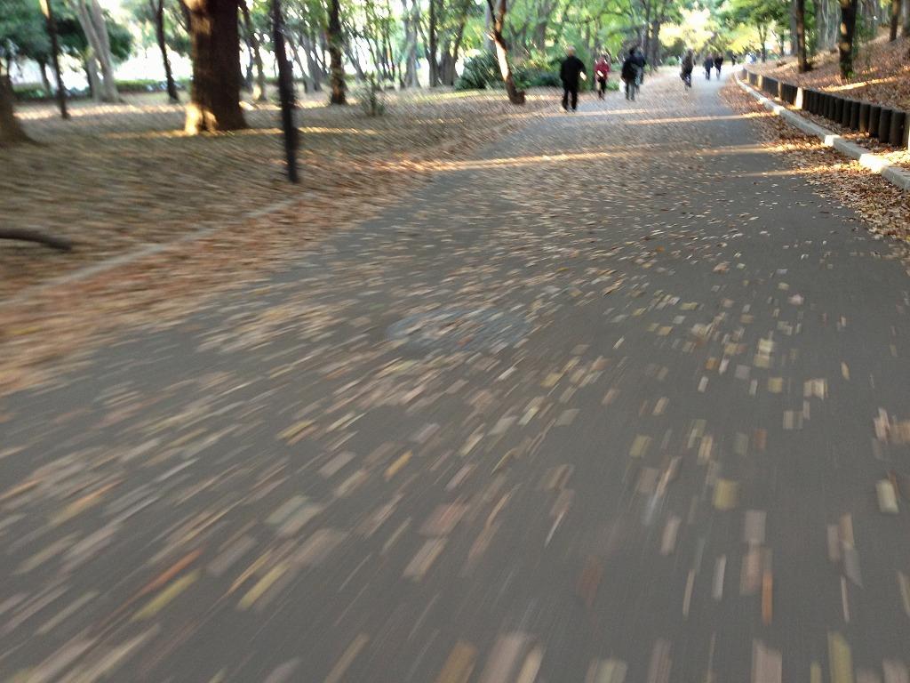 20121125_光が丘 (2)