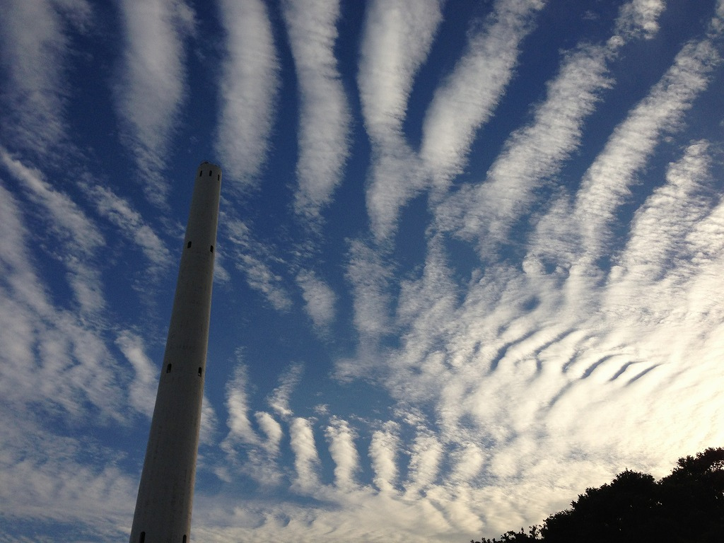 20121013_光が丘 (3)