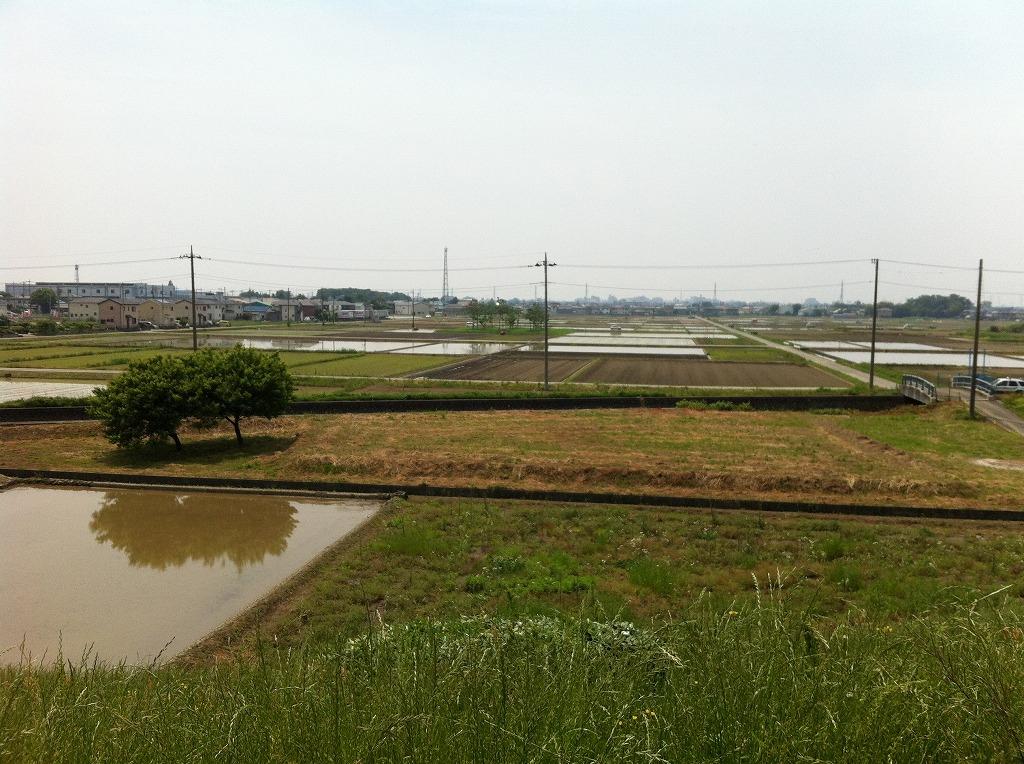 20120520_榎本牧場ラン (2)