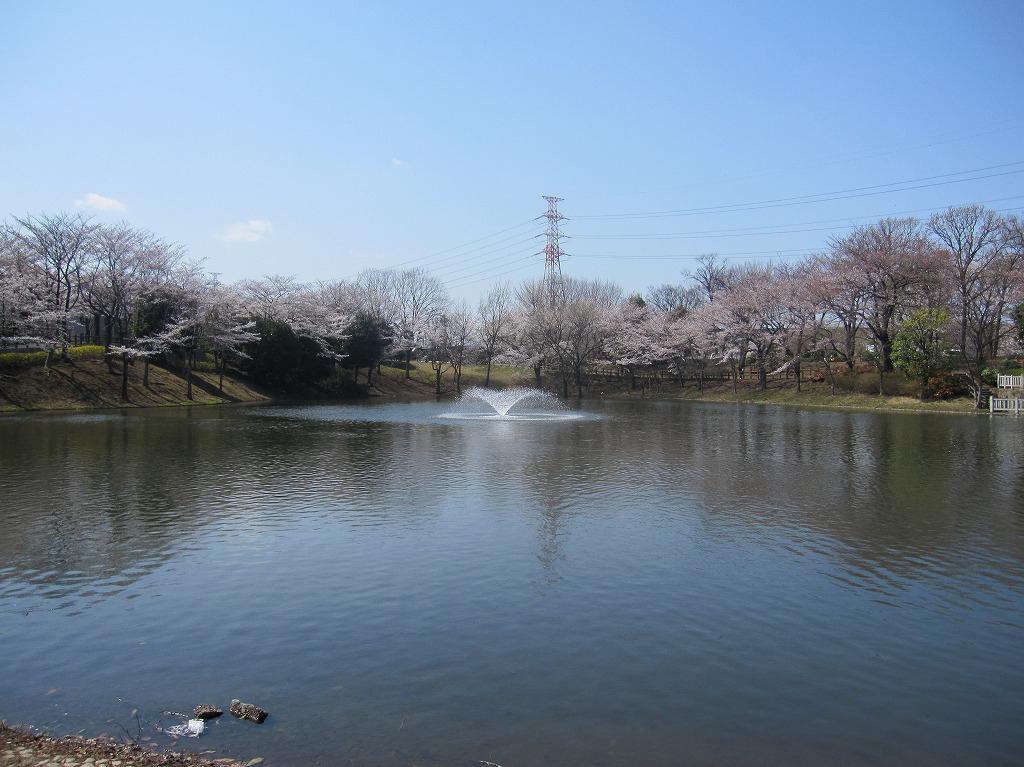 20120408_花見 (1)