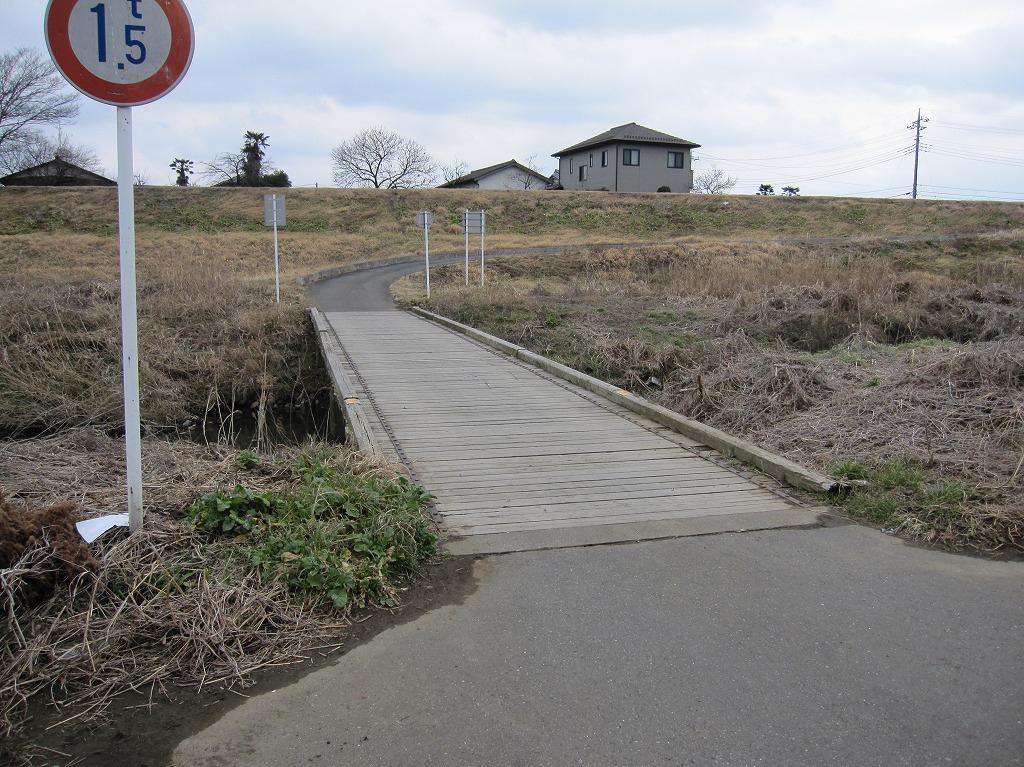 20120304_川島白鳥LR (2)