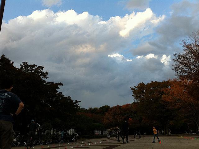 2011.11.20_光が丘 (2)