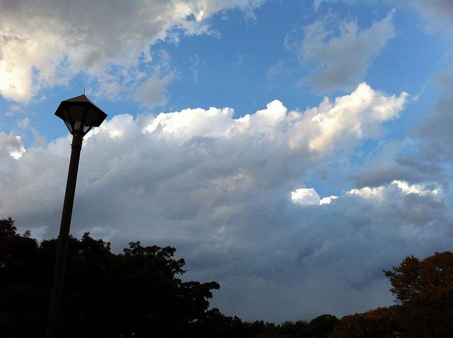 2011.11.20_光が丘 (3)