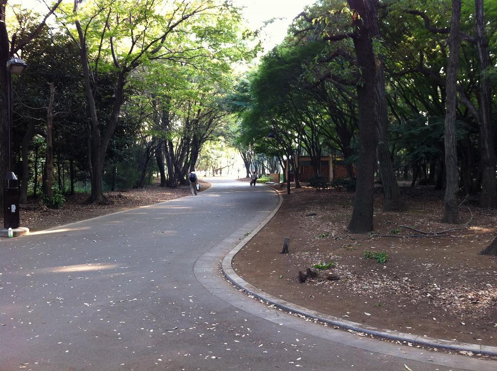 2011.11.04_Hikarigaoka (1)
