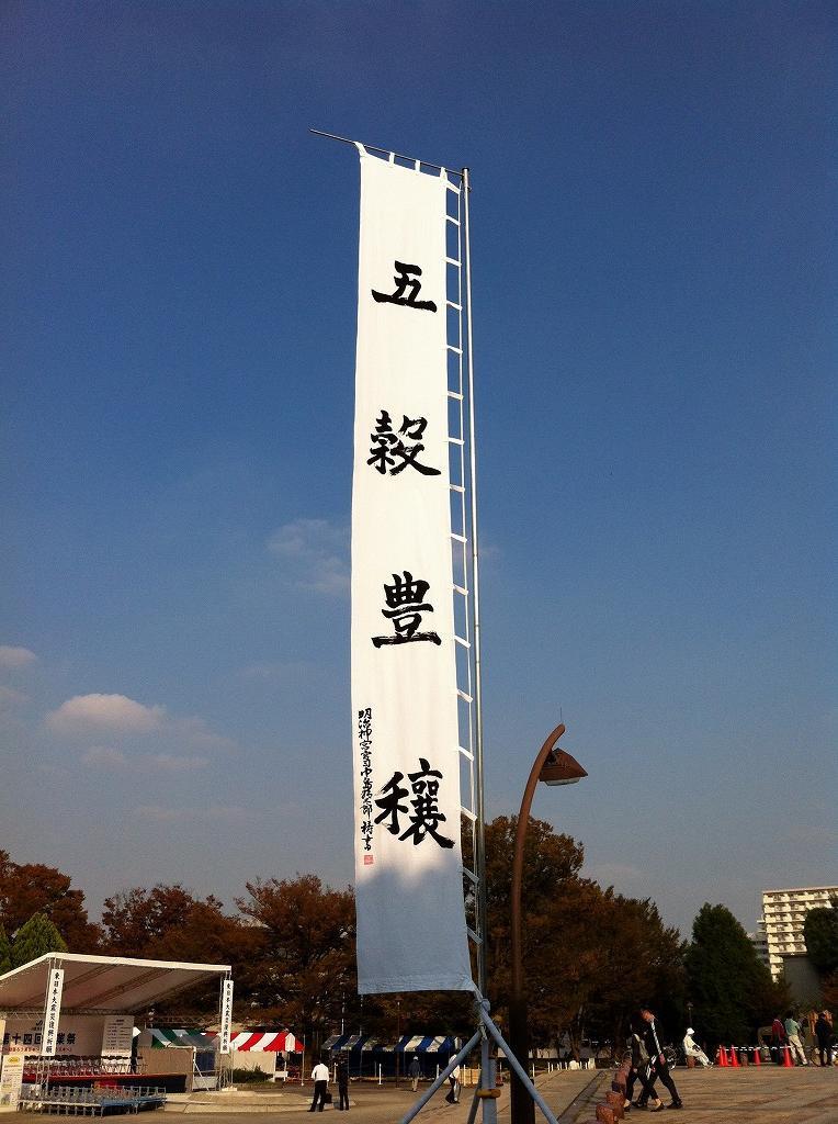 2011.11.04_Hikarigaoka (3)