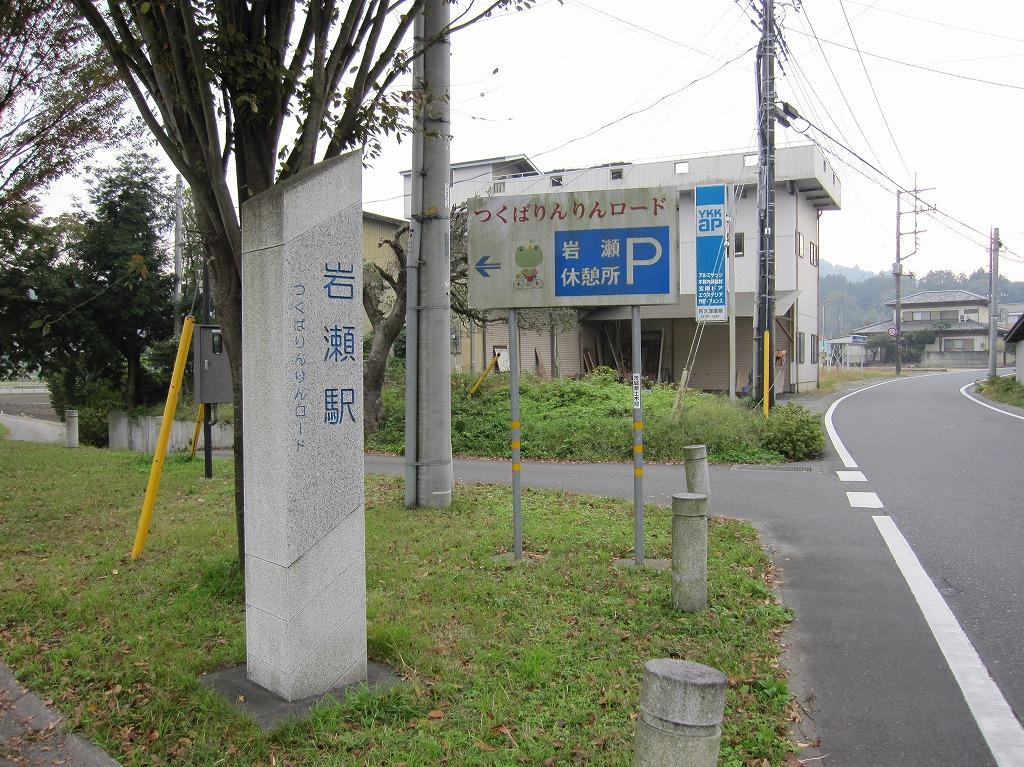20111104_つくばりんりんLR (1)