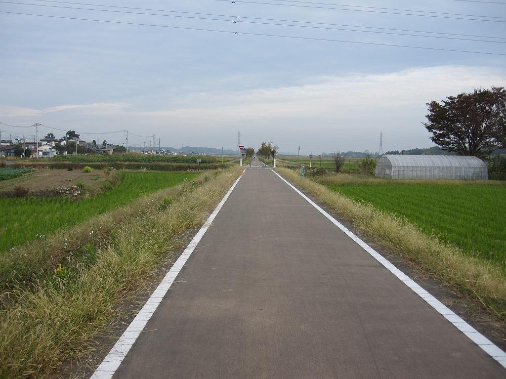 20111104_つくばりんりんLR (5)