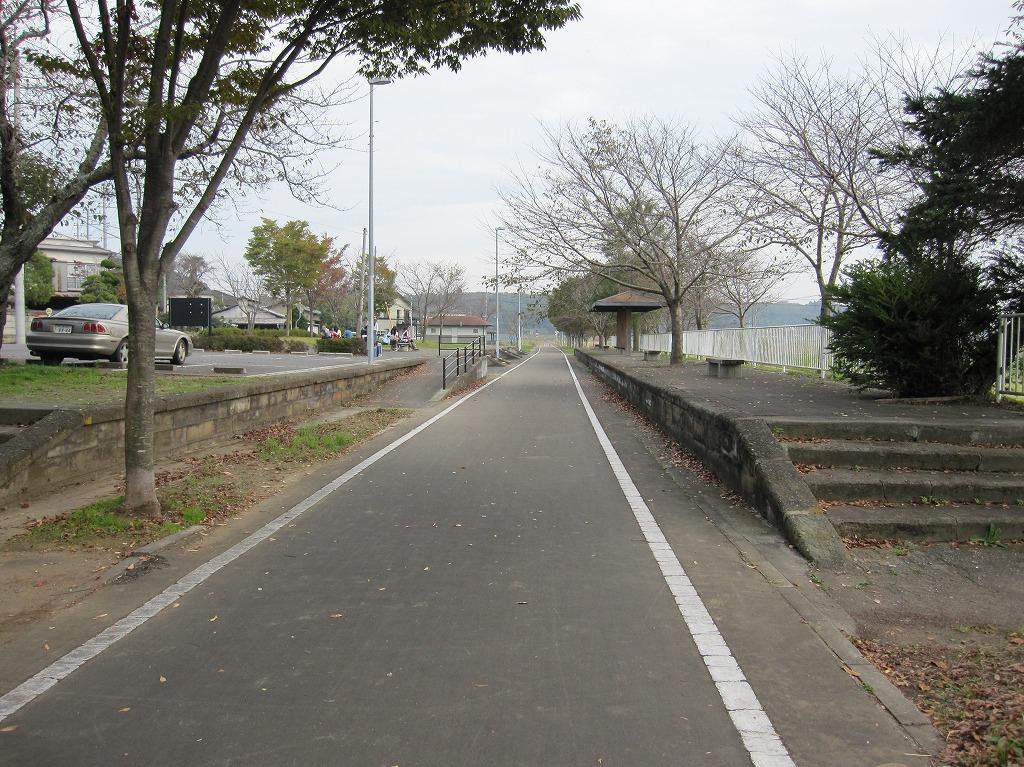 20111104_つくばりんりんLR (6)