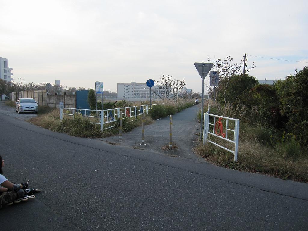 20111104_つくばりんりんLR (9)