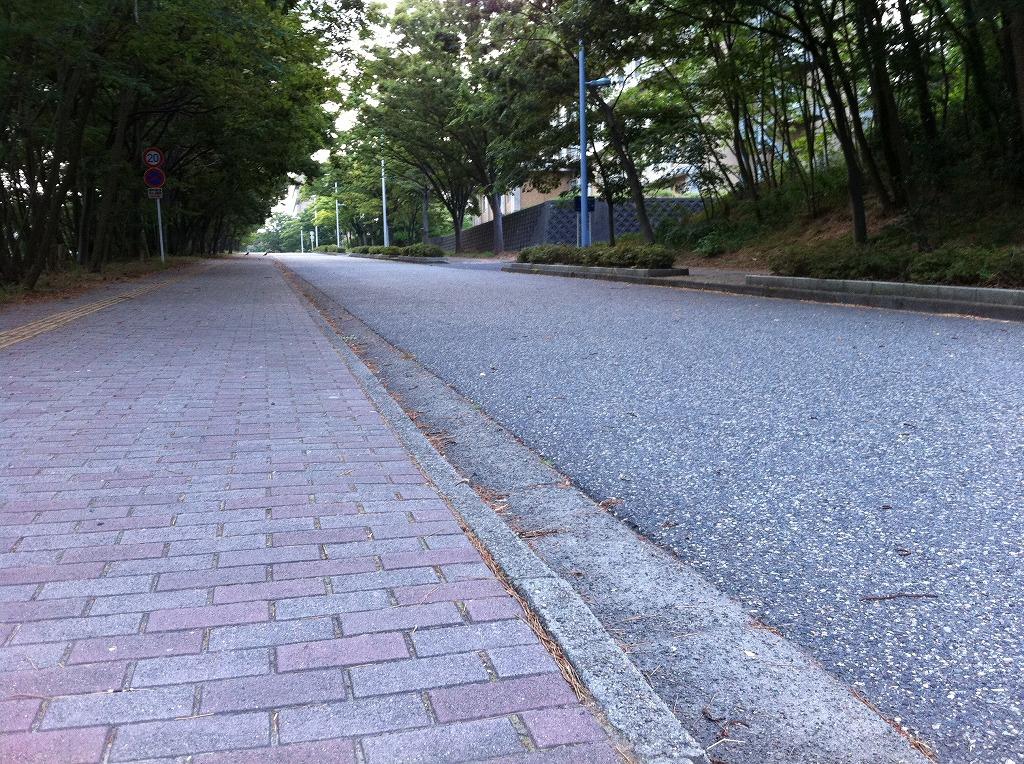 2011.08.15_新潟大学五十嵐キャンパス (坂下)