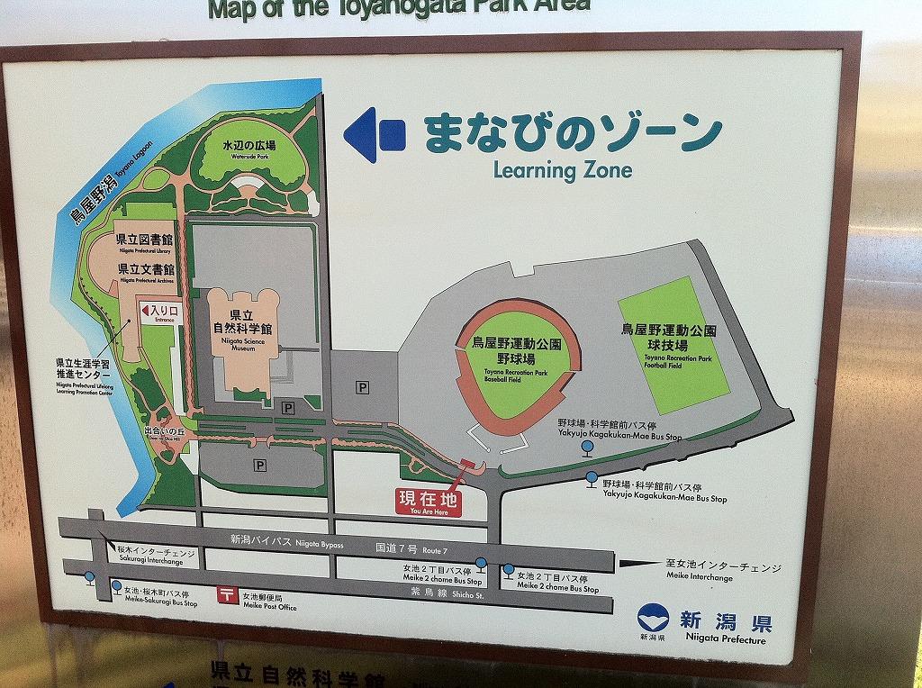 2011.08.14_鳥屋野潟公園 (1)