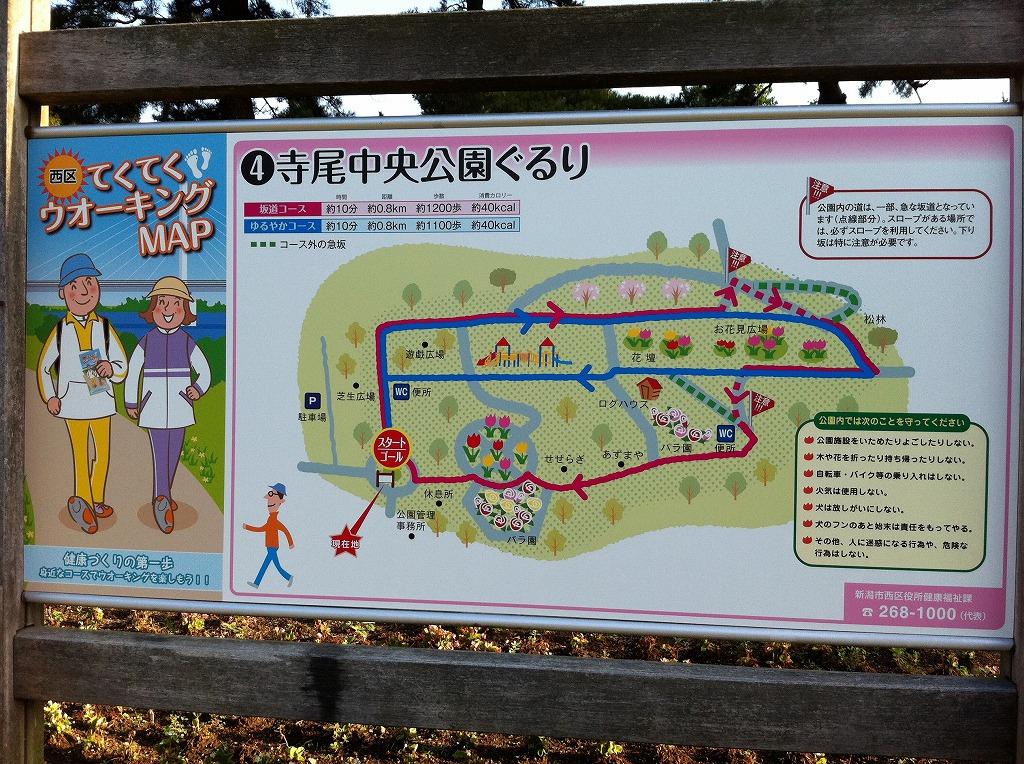 2011.08.14_寺尾中央公園 (2)