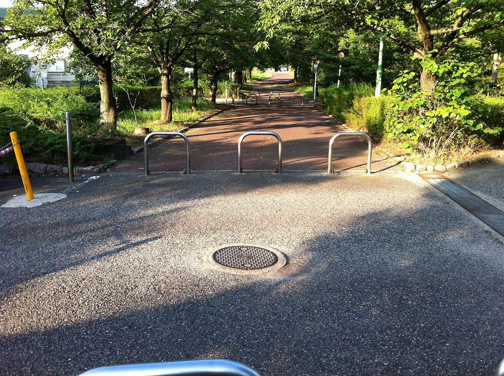 2011.08.14_寺尾中央公園 (3)