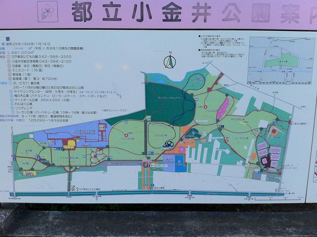 2011.07.06_小金井公園 (5)