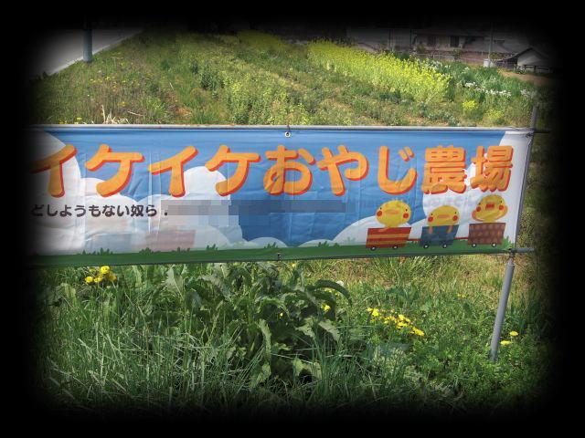 イケイケ農場