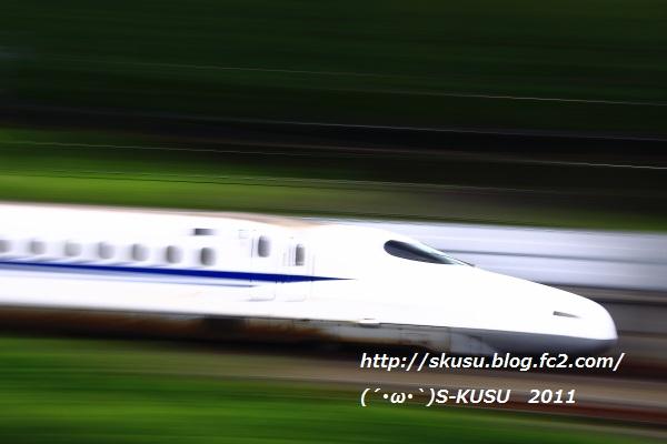 FC2_P5J0351.jpg