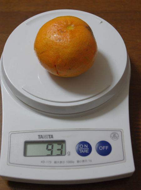 141122-伊予柑台津之輝