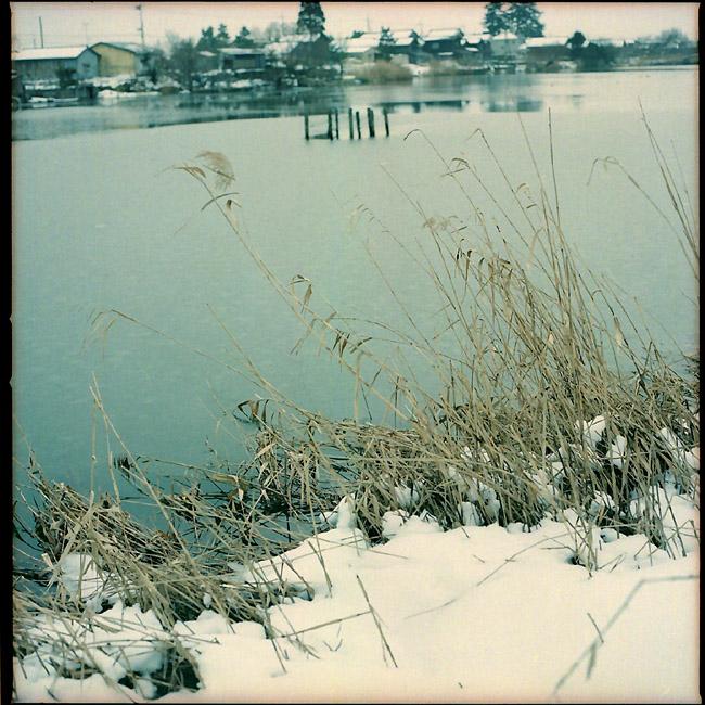 冬色乙女ヶ池