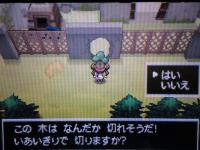pokemon+006_convert_20120807185245.jpg