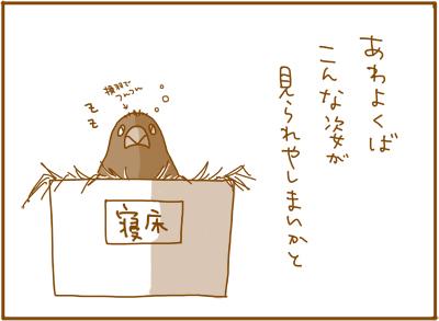0116_3.jpg