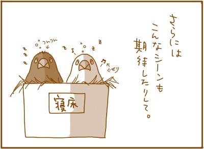 0116_4.jpg