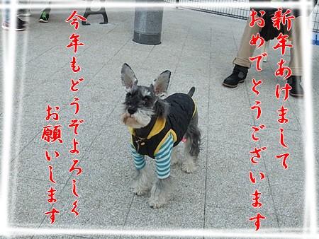 2013_0105_141424.jpg